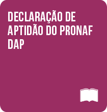 declarao-de-apitiido-do-pronaf-7.png